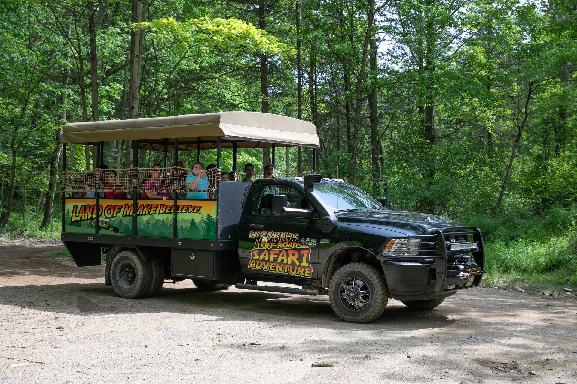 safari-IMG_6829